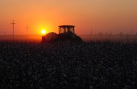 tractor @ sunset1