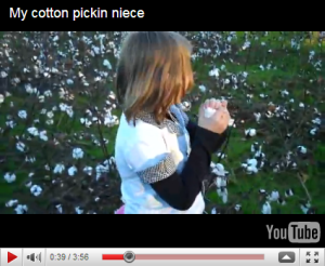 child picking cotton