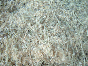 premix of dairy cattle feed