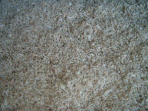 whole cottonseed