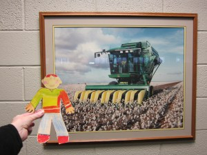 flat-stanley-cotton-picker