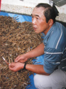 Japanese farmer with soybeans Hitomisan