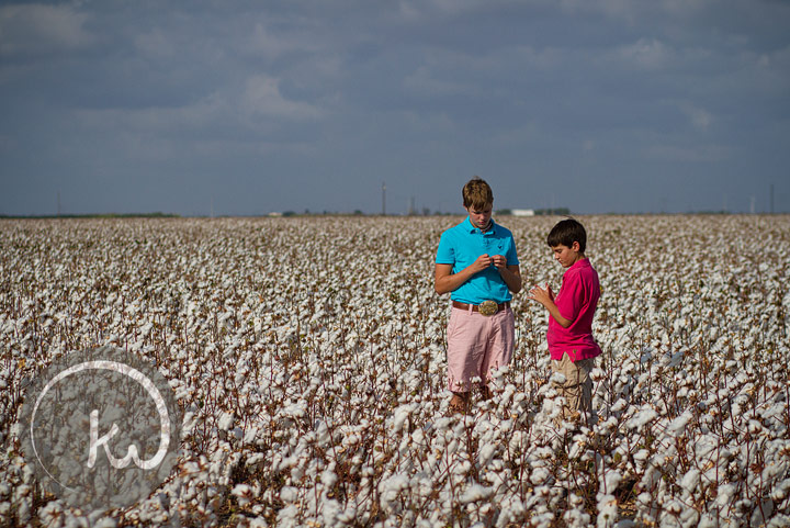 Kelly Whatley's sons in the South Texas cotton at harvest