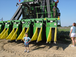 little man at a cotton picker