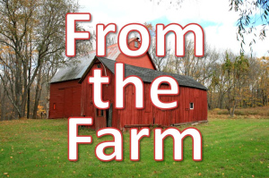 from the farm blog series