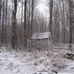 a shack in the Michigan Woods