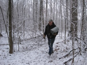 Jerry putting buckets out by maple trees