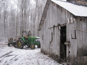 coming back in to the sugar shack