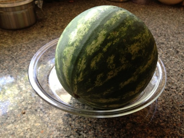 small watermelon to be cut up