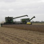 Neighbors helping each other try to finish soybean harvest Matt Raley central Louisiana