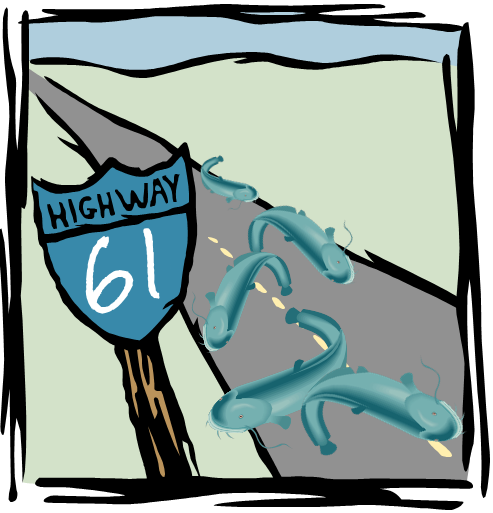 Highway 61 - the catfish highway?