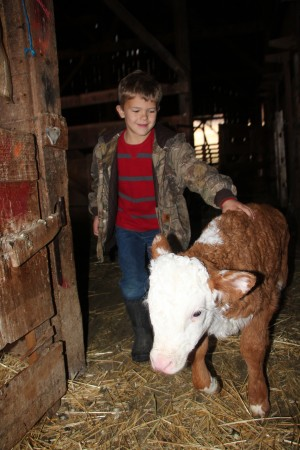 Kyle & his Hereford calf