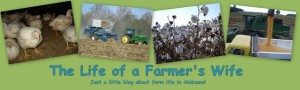 The Life of a Farmer's Wife banner