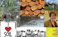 A to Z Agriculture blogging challenge