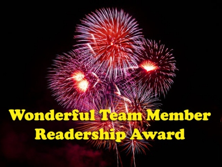 wonderful team award