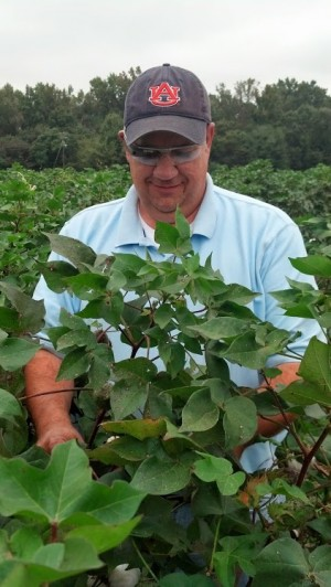 scouting cotton with Google glass