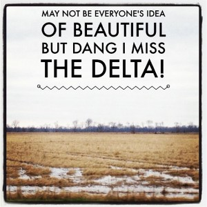 dang, I miss the Delta