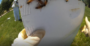 gloves and hives