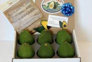 California Avocados Direct from the farm